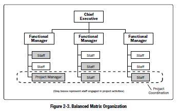 Weak Matrix Organisation